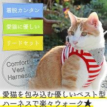 iCat猫用コンフォートハーネスリード付きスターバンダナボーダーアイキャット。