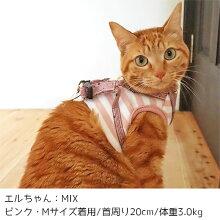 立体裁断で猫ちゃんの体にフィット