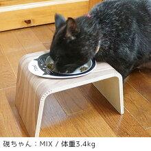 にゃんこが食べやすい低めの食器皿