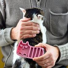 ムッとした顔のキュートなしまネコが愛らしいデザイン