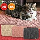 【 猫 ブランケット マット 】IDOG&ICAT WARM REACT アルミHOTマット アイドッグ【 あす楽 翌日配送 】【 ブランケット マット ひざかけ ステイマット 保温 蓄熱 毛布 ic