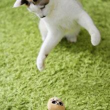 猫福袋おもちゃMIX2.4kgの風花ちゃんが遊んでくれました