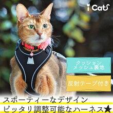 iCatソフトキャットハーネス単品アイキャット。