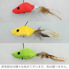 自然のものを使っていますので、羽根部分は様々な色がございます。色は選べません。
