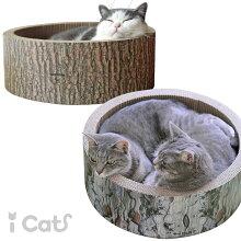 iCat猫のくつろぎつめとぎ森の切り株