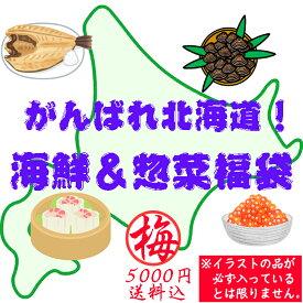 【送料込】がんばれ北海道!海鮮&惣菜福袋(梅:5000円) 食品ロス フードロス