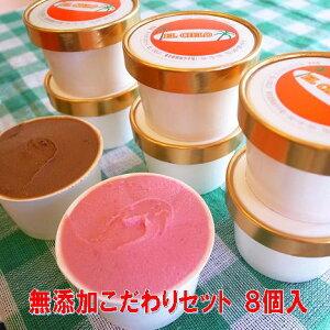 無添加 体に優しい手作りアイスクリーム 選べるこだわりセット8個入 ミルク あずき 抹茶 チョコレート 黒大豆きな粉 キウイ チョコチップ デコポン 紅茶 いちご ラムレーズン フロマージュ