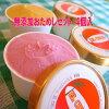 無添加体に優しい手作りアイスクリーム選べるおためしセット4個入
