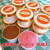 無添加体に優しい手作りアイスクリーム選べるこだわりセット16個入