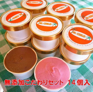 無添加 体に優しい手作りアイスクリーム 選べるこだわりセット14個入ミルク あずき 抹茶 チョコレート 黒大豆きな粉 キウイ チョコチップ デコポン 紅茶 いちご ラムレーズン フロマージュ