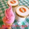 無添加体に優しい手作りアイスクリーム選べるパーティーセット(コーン付)