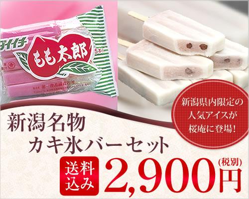 新潟名物カキ氷バーセット【各2パック・22本入】【送料無料】【05P25May18】