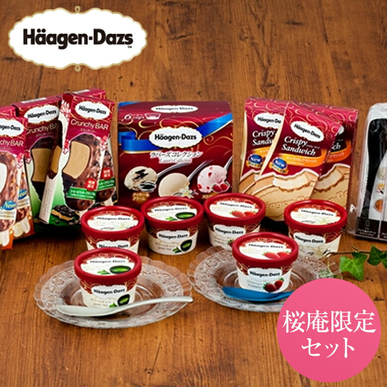 ハーゲンダッツ アイスクリーム 7,500円セット&Made in TSUBAMEアイススプーン2個セット(ver.6)【送料込】【ラッピング付】(9種・21個入り)【05P21Feb19】