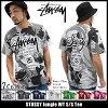 Stussy STUSSY 丛林 WT T 恤 (stussy tee t 恤衫 t 恤上衣男装,男装 1903507 Stussy stussy Stussy Steacy) 冰提起的冰原