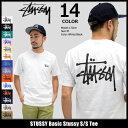 ステューシー STUSSY Tシャツ 半袖 メンズ Basic Stussy(stussy tee ティーシャツ T-SHIRTS カットソー トップス ベーシ...