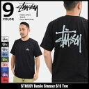 【9/28入荷予定】ステューシー STUSSY Tシャツ 半袖 メンズ Basic Stussy(stussy tee ティーシャツ T-SHIRTS カットソ…