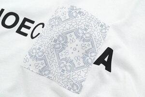 ディーシーDCTシャツ半袖メンズペイズリー日本限定(dcPaisleyS/STeeJapanLimitedティーシャツT-SHIRTSカットソートップスメンズ男性用5126J941)[M便1/1]icefiledicefield