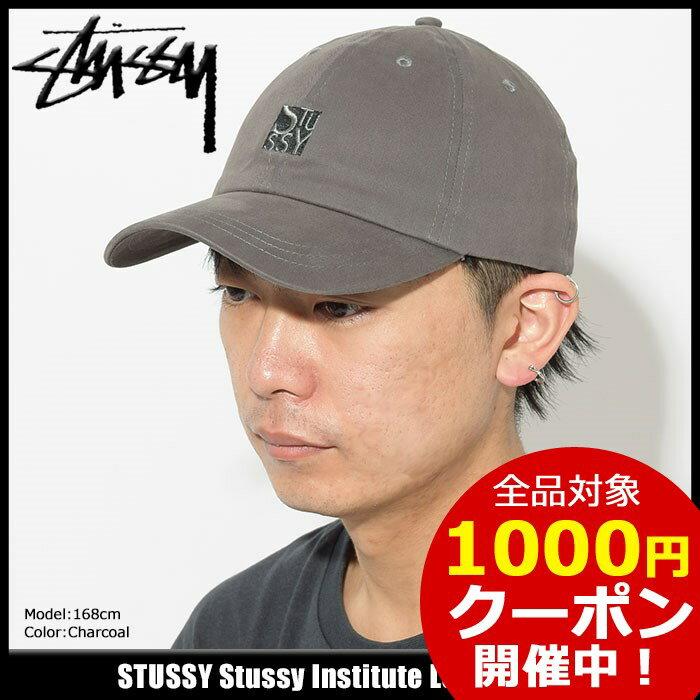 ステューシー STUSSY キャップ 帽子 Stussy Institute Low Pro Cap(ローキャップ ストラップバック メンズ・男性用 131792 USAモデル 正規 品 ストゥーシー スチューシー) ice filed icefield