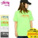 ステューシー STUSSY Tシャツ 半袖 レディース WOMEN Stussy Designs Pigment Dyed(stussy tee ピグメント ティーシャツ カットソー トップス ガール