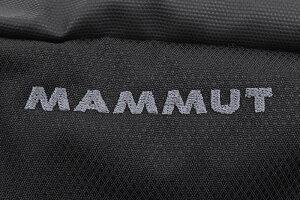マムートMAMMUTウエストバッグアーバン(mammutUrbanWaistBagWaistpackウエストパックウエストポーチヒップバッグボディバッグアウトドアトレッキング登山メンズレディースユニセックス男女兼用2520-00510)icefiledicefield