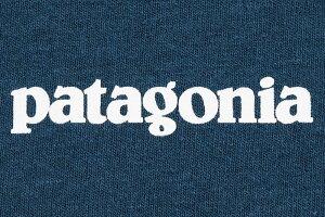 パタゴニアPatagoniaTシャツ長袖メンズP-6ロゴレスポンシビリティー(PatagoniaP-6LogoResponsibiliL/STeeティーシャツT-SHIRTSロングロンティーロンtカットソートップスアウトドアUSAモデル38518)icefieldicefield