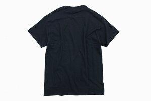 ポニーPONYTシャツ半袖メンズニューボックスロゴ(PONYNewBoxLogoS/STeeティーシャツT-SHIRTSカットソートップスP19TE01)[M便1/1]