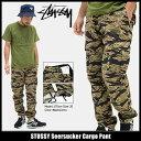 ステューシー STUSSY パンツ メンズ Seersucker Cargo(stussy pant カーゴパンツ ミリタリーパンツ ボトムス カモ 迷彩 メンズ・男性用 116316 ストゥーシー