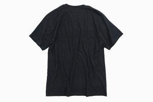 ステューシーSTUSSYTシャツ半袖メンズWarriorMan(stussyteeティーシャツT-SHIRTSカットソートップスメンズ・男性用1904351USAモデル正規品ストゥーシースチューシー)[M便1/1]icefiledicefield