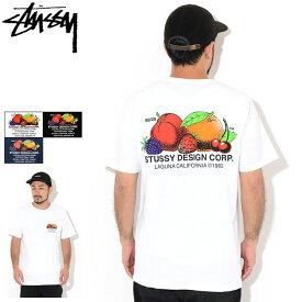 ステューシー STUSSY Tシャツ 半袖 メンズ Fresh Fruit ( stussy tee ティーシャツ T-SHIRTS カットソー トップス メンズ・男性用 1904542 USAモデル 正規 品 ストゥーシー スチューシー )[M便 1/1] ice field icefield