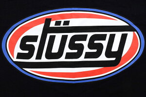 ステューシーSTUSSYTシャツ長袖メンズSwirlSport(stussyteeティーシャツT-SHIRTSカットソートップスロングロンティーロンtメンズ・男性用1994445USAモデル正規品ストゥーシースチューシー)icefiledicefield