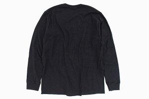 ステューシーSTUSSYTシャツ長袖メンズStock(stussyteeティーシャツT-SHIRTSカットソートップスロングロンティーロンtメンズ・男性用1994496USAモデル正規品ストゥーシースチューシー)icefieldicefield