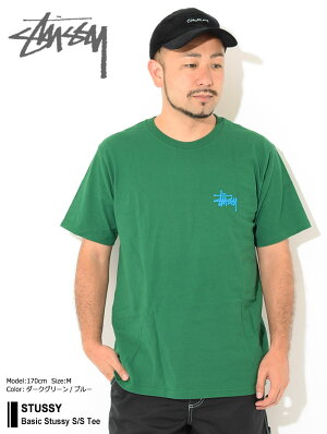 ステューシーSTUSSYTシャツ半袖メンズBasicStussy(stussyteeティーシャツT-SHIRTSカットソートップスベーシックメンズ・男性用1904535USAモデル正規品ストゥーシースチューシー)[M便1/1]