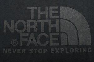 ザノースフェイスTHENORTHFACETシャツ半袖メンズカラードーム(thenorthfaceColorDomeS/STeeティーシャツT-SHIRTSカットソートップスメンズMENSNT31930ザ・ノース・フェイスTHE・NORTHFACE)[M便1/1]