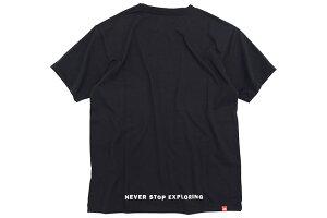 ザノースフェイスTHENORTHFACETシャツ半袖メンズスモールボックスロゴ(thenorthfaceSmallBoxLogoS/STeeティーシャツT-SHIRTSカットソートップスメンズMENSNT31955ザ・ノース・フェイスTHE・NORTHFACE)[M便1/1]icefiledicefield