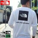 ザ ノースフェイス THE NORTH FACE Tシャツ 長袖 メンズ バック スクエア ロゴ ( the north face Back Square Logo L/S Tee ティーシャ…