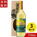 ワイン パイナップルワイン ラグリマデルソル 辛口 720ml×3 フルーツワイン 果実酒 沖縄 お土産 お酒 化粧箱付き
