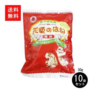 天使のはね梅味 10袋セット送料無料 丸吉塩せんべい 不思議な食感 ふわふわ せんべい 沖縄土産 人気