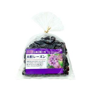 巨峰の郷大粒レーズン 300g×20袋【同梱・代引き不可】