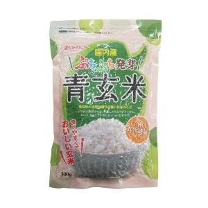 もち麦シリーズ ぷちぷち発芽青玄米 300g 10入 K10-202【同梱・代引き不可】