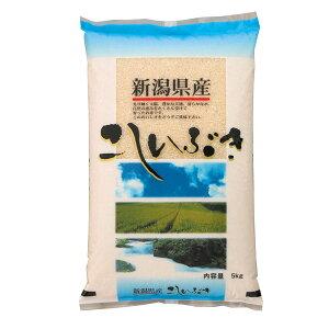 令和2年産 2020年度産 米 新潟産こしいぶき 5kg 米 精米 白米 5キロ 食品 産地直送 お米 白米 【代引/同梱不可】