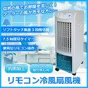 【あす楽】【送料無料】 冷風扇 TEKNOS テクノス クーラーが苦手な方へ リモコン付き 冷風扇風機 TCW-010 冷風機