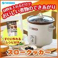 【送料無料】スロークッカーグリル鍋レシピ付3.0LTWINBIRDツインバードEP-4717BRブラウンコトコト煮込んで美味しさを引き出す