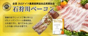 【TVで紹介】石狩川 ブロックベーコン 300g ×10袋 送料無料高級 ベーコン ブロック セット まとめ買い 北海道グルメ スモーク 燻製 おいしい 肉 スモークベーコン ベーコンブロック オンライ