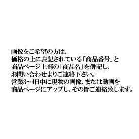 ラスボラ・ヘテロモルファ・ビンタンレッド  【販売単位:1尾】