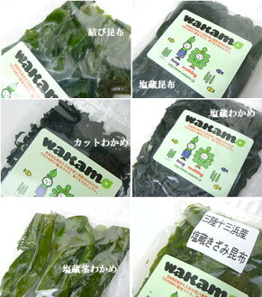 ♦ production direct wakamoset seaweeds and kelp 6 set salted kelp Laminaria seaweed 20 ishinomaki city 13 Beach fisheries production Union Beach people (hamanndo) 02P03Sep16