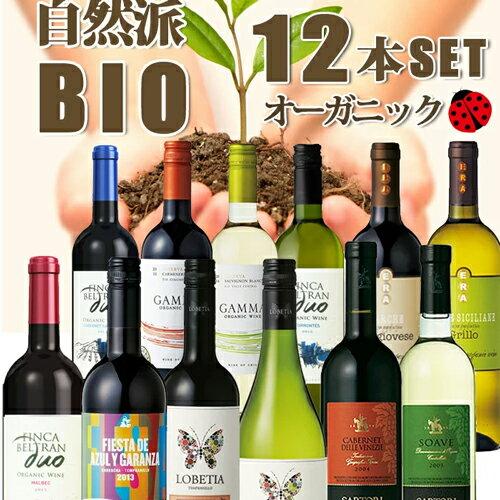 ワインセット ビオワインだけの12本セット 送料無料 自然派ワイン12本