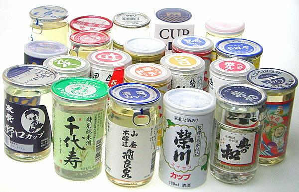 日本酒 飲み比べ 日本酒セット カップ酒 10本 180ml×10本 送料無料