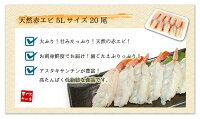 お刺身用赤エビ5Lサイズ(20尾入)アルゼンチン産の鮮度抜群の赤エビを急速冷凍!大ぶり5Lサイズをご用意、お刺身も肉厚プリプリで食べ応え抜群!殻むき済(あかえび赤エビ赤海老アカエビ刺身手巻き寿司海鮮丼)【akb】《ref-akb1》[[赤えび20尾]