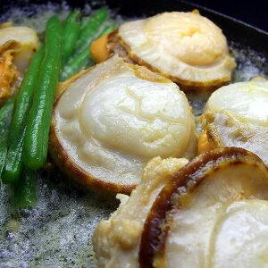 北海道産ボイルほたて2Lサイズ1kg(NET800g) 一口では食べきれないほどの特大サイズで食べ応え満点!獲れたてボイルで甘みと旨味がギュギュッと詰まっています。バター焼き、フライ等に(帆