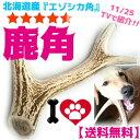 北海道産★鹿の角★犬のおもちゃ 15〜25cm大型犬〜中型犬『角王(つのおう)』送料無料 誕生日プレゼントやしつけ・いた…